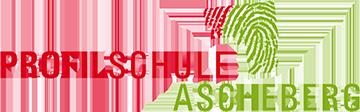 Profilschule Ascheberg Logo
